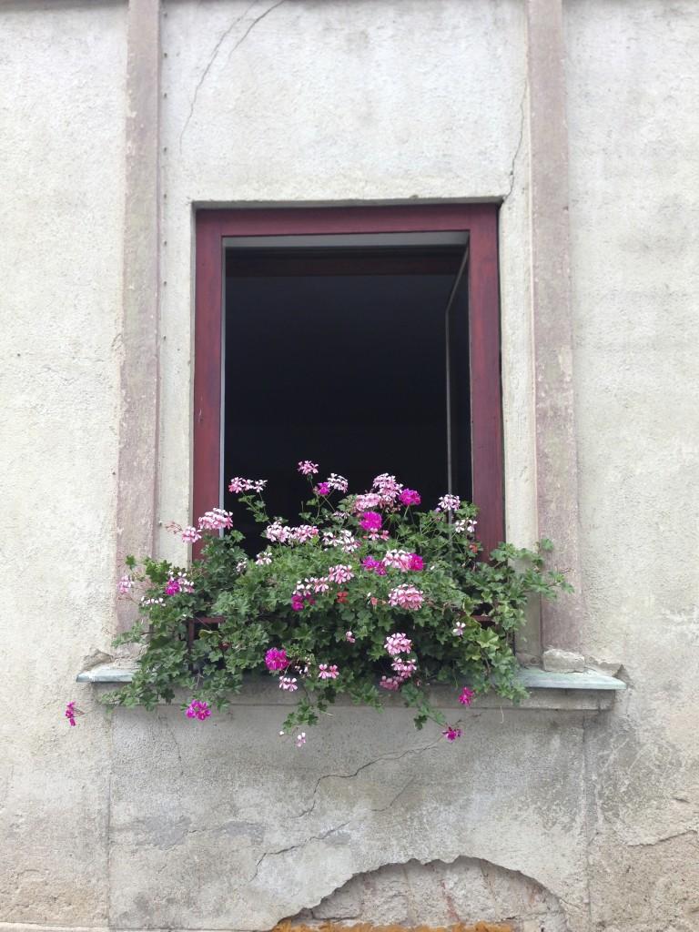 lovely window