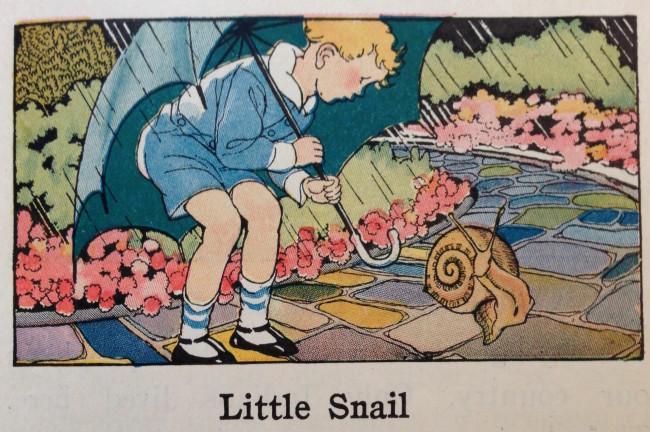 littlesnail