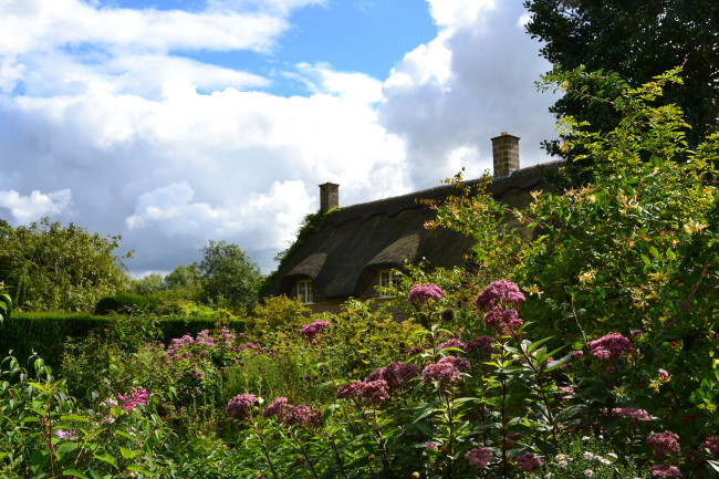 thatched house garden