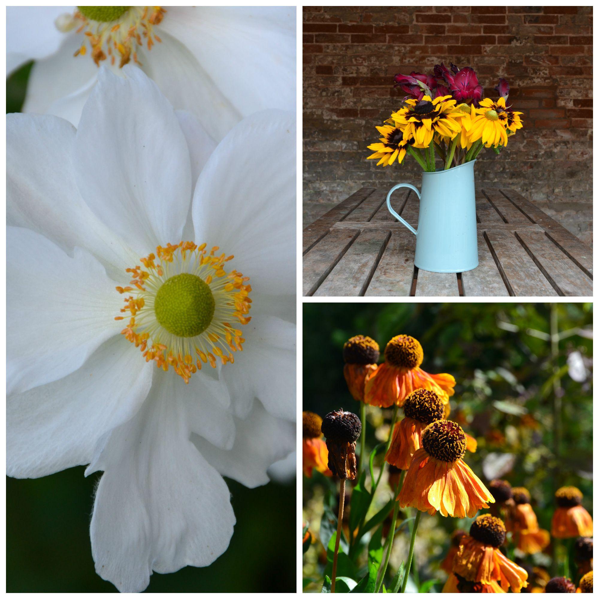 englishflowers